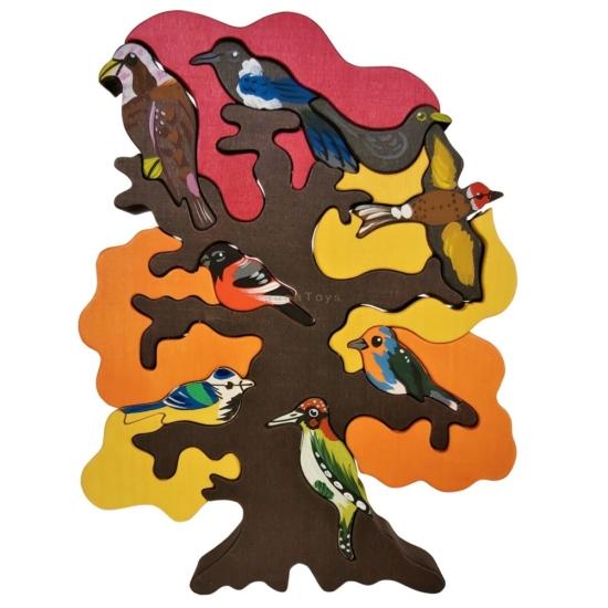 Madarasfa európai, tavaszi-őszi