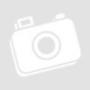 Kép 1/3 - A fiú és a kém The Boy And The Spy